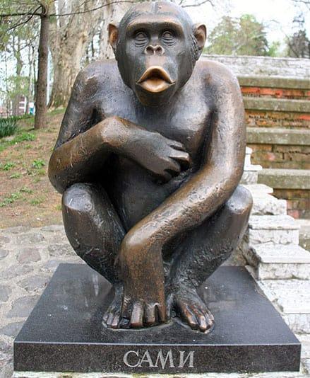 הפסל של סאמי השימפנזה
